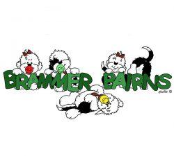 Brammer Bairns