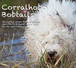 Corralhobo