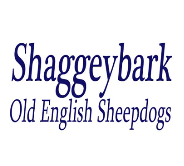 Shaggeybark